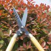 Hot Sell Strong Useful Garden Headge Trimmer