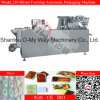 Flat Aluminum Plastic Blister Automatic Packaging Machine