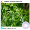Plant Extract Matrine Powder Sophora Extract 519-02-8