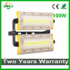 Newest Style Outdoor 100W LED Module Flood Light