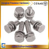 Stainless Steel A2-70 Hex Head Combined Assembly Sem Screws