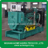 Diesel Generator MW Power Plant From China