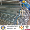 Gi Hollow Section Steel Pipe/Shs/Rhs Specification