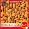 Natural Organic Almonds for Nuts Snack Food Export Wholesale