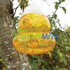 High Quality Wasp Hornet Yellow Jacket Traps