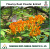 Pleurisy Root Powder Extract From Asclepias Tuberosa