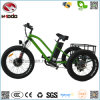 750W Fat Tiye Electric Tricycle Lithium Battery Bike for Adult