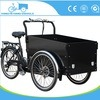 Electric Tricycle Cargo Bike for Kids Pets for Sale