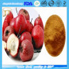 High Quality Water Soluble Hawthorn Berry Extract