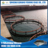 Floating HDPE Culture Tilapia Cage