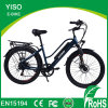 Hidden Battery Electric City Bicycle Vehicles