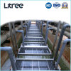 UF Membrane Mbr Sewage Treatment System for Municipal Wastewater