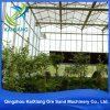 European Standard Glass Commercial Greenhouse for Sale Vegetable