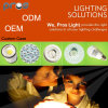 China Manufacture LED Lighting ODM/ OEM Project