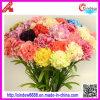 Decorative Carnation Flower (XDHY-10148)