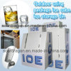 Outdoor Using Package Ice Cube Ice Storage Bin