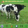 Cattle Fence/Sheep Fence/Deer Fence/Farm Fence for Animals Made in China