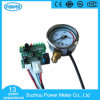 Factory Price High Quality CNG Pressure Gauge