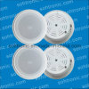 9V1a Power Mini Ceiling Speaker Wireless Bluetooth Amplifier