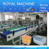 High-Speed Automatic PE Film Linear Shrink Wrap Packing Machine (20-30packs/min)