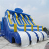 2017 Most Popular Inflatable Water Slide