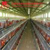 Laying Hens Chicken Cage with Environment Control Feeding Equipment