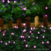 Solar Powered 100 LED Rose Red Outdoor Christmas String Light
