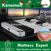 Encased Pocket Spring Mattress High Quality