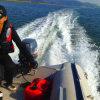Boat Engine/ Boat Motor 30HP Earrow