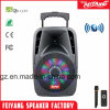 10 Inch Mini Cheap Popular Rechargeable Portable Bluetooth Trolley Speaker with Light F-24m