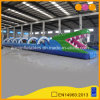 Inflatable Aqua Toy Long Crocodile Inflatable Water Slide for Sale (AQ10136)