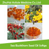 Natural Pure Sea Buckthorn Seed Oil Softgel