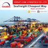 Freight Forwarder Sea Shipping (FCL/LCL) From China to Chicago, Il USA