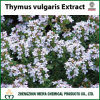 Thyme Powder Extract with Extract Ratio 5: 1, 10: 1