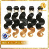 Omber Color Wholesale Virgin Malaysian Hair Extension Body Wave