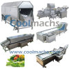 Washing Machine for Vegetables and Fruits Processing Line/Washer
