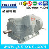 High Voltage Thress Phase Electric Coal Mine Explosion Proof Motor