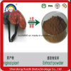 High Quality Natural Ganoderma Lucidum Spore Extract Powder