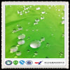 Wr Water Repellent Fabric for Garment