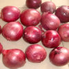 Export High Quality New Crop Red Onion 4-7cm