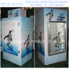 Indoor Ice Bag Storage Freezer with Single Door
