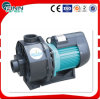 4.0 HP Mini Electric Submersible High Pressure Water Pump for Swimming Pool /SPA/Pond
