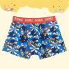 Boy's Cotton/Elasthane Underwear Shorts