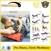 Procircle Durable Therapy Muscle Massage Foam Roller