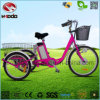 3 Wheel Electric Bike Big Wheel Tricycle for Cargo