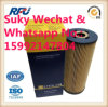 High Quality Atuo Parts Oil Filter for Hengst E197h D23