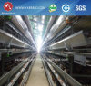 Cages for Chicken Farming/Poultry Battery Cage