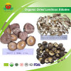 Manufacturer Supply Organic Dried Shiitake
