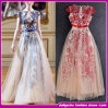 The New Europe 2015 Evening Dress Embroidery Celebrity Dress (C-214)