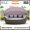 Rattan Wicker Round Lounge/Sun Lounge/Wicker Sun Lounger (SC-B7022)